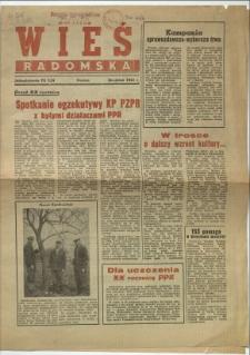 Wieś Radomska