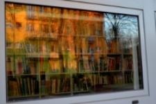 Świat w oknie