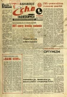Radomskie Echo Skórzanych, 1969, R. 14, nr 32