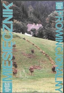 Miesięcznik Prowincjonalny, 2003, R. 6, nr 7/8