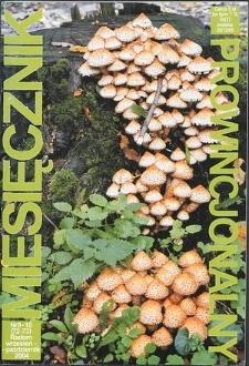 Miesięcznik Prowincjonalny, 2004, R. 7, nr 9/10