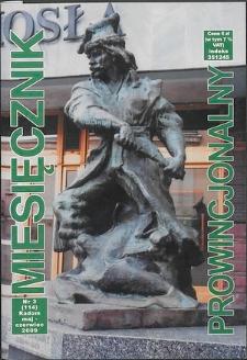 Miesięcznik Prowincjonalny, 2009, R. 11, nr 3
